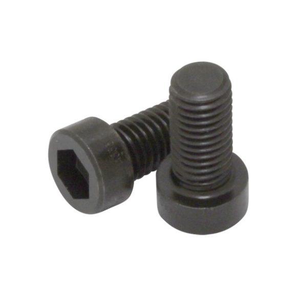 Tornillo DIN7984 de alta resistencia PV